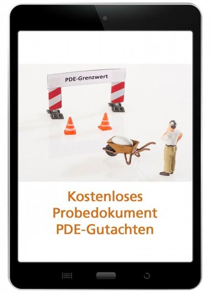 PDE-Gutachten - Beispieldokument